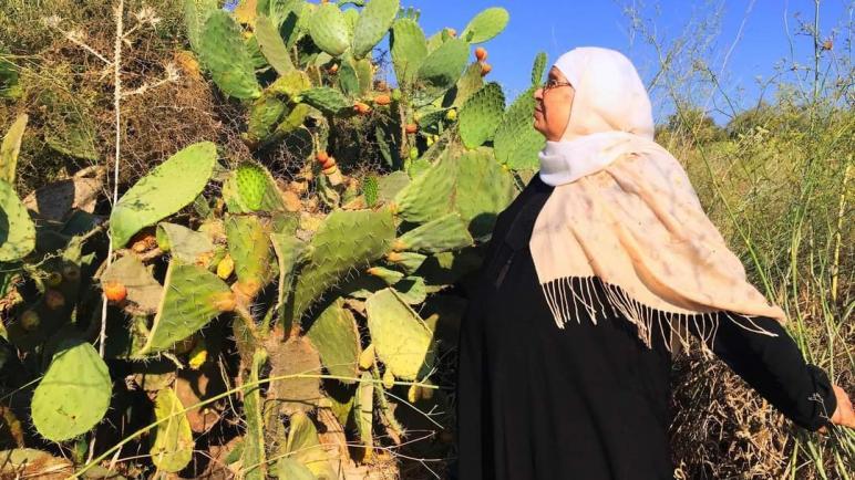 هُجّرت من قريتها طفلة بعمر ٦ سنوات وعادت اليها بعمر ال ٧٤.
